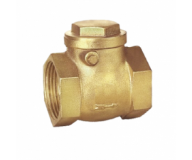 TCS-113-SA-BRASS-SWING-CHECK-VALVE-300x300
